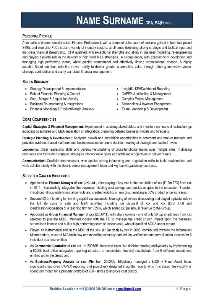 Professional CV Examples Free Download